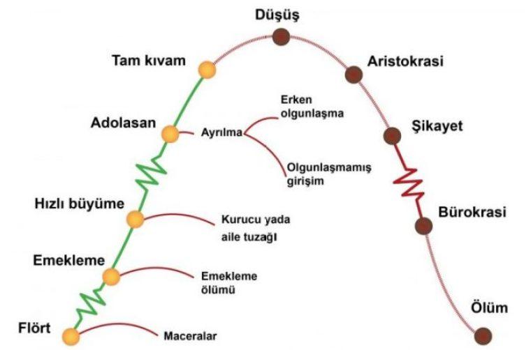 Adizes Lifecycle Chart