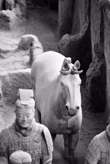 close up of a terracotta warrior and their horse