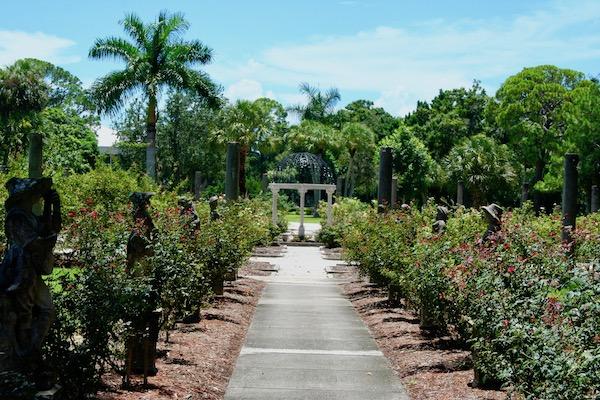John Ringling- The Ringling – Ca d'Zan – The Ringling Mansion – Sarasota Florida- State Art Museum of Florida - Mable's Rose Garden