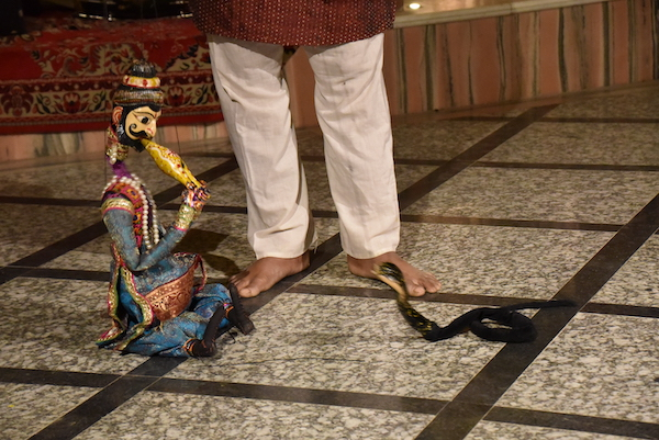 Puppeteer - Rajasthani puppets - snake charmer puppet - snake puppet - puppeteer with two puppets - Shahpura House