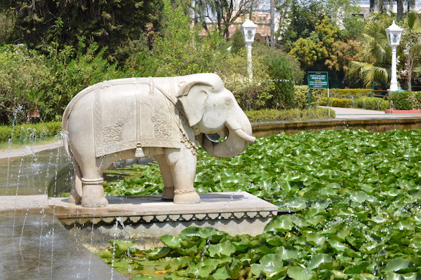 a large round lotus pond lined with carved white marble elephants at the Garden of the Maidens in Udaipur