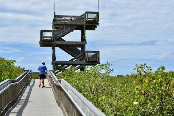 boardwalk and observation tower at Weedon Island Preserve