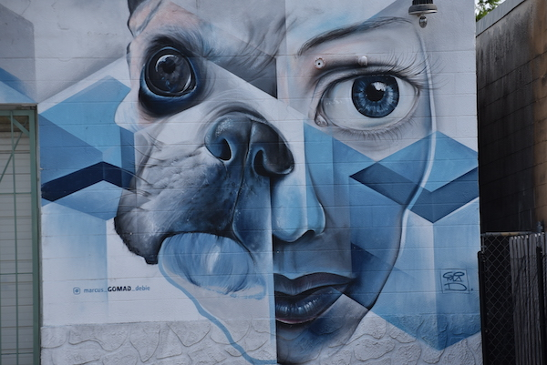 modern mural of a dog and woman in Saint Petersburg Florida