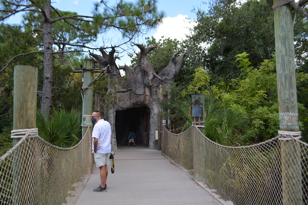 Chuck wandering through the Expedition Africa  at the Brevard Zoo