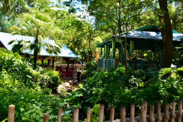 seating pavilions at Flame Tree Barbecue in Disney's Animal Kingdom