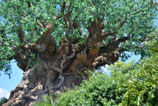 animal carving in the Tree of Life at Disney's Animal Kingdom