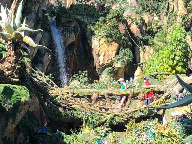 Walt Disney World Guests crossing a bride in Pandora's Valley of Mo'ara in Animal Kingdom
