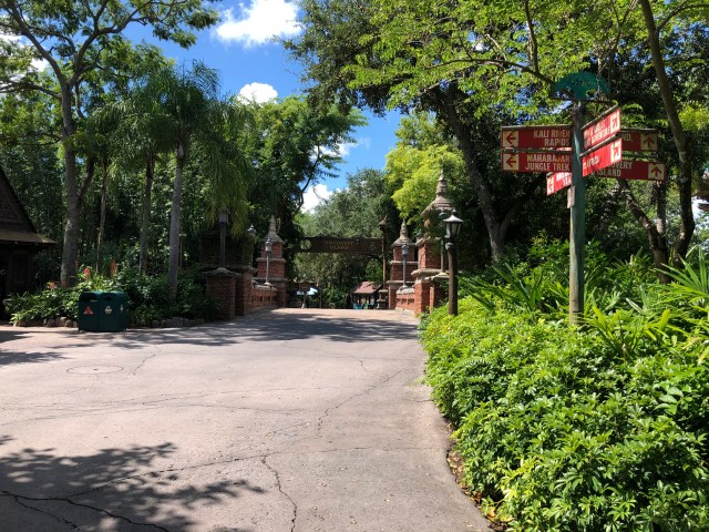 Empty view of walkway leading to Discovery Island at Disney's Animal Kingdom