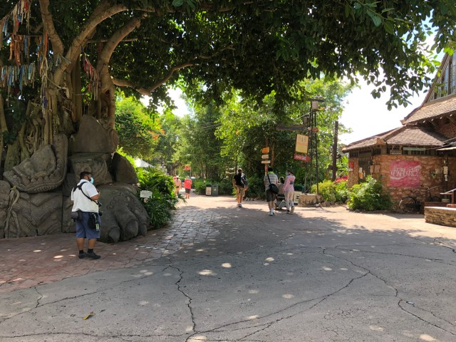 empty walkway leading toward Asia in Disney's Animal Kingdom