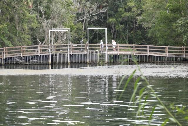 walkways through the Ellie Schiller Wildlife Park in Homosassa Springs Florida