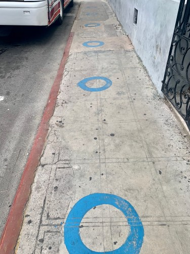 blue circles on the sidewalk at a bus stop in Merida Mexico to promote physical distancing while waiting for a bus while traveling during a pandemic