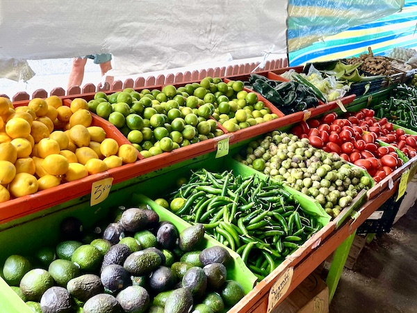 outdoor market near St Petersburg Florida with fresh Mexican ingredients