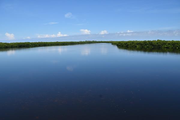 Peaceful views from the J.N. 'Ding' Darling National Wildlife Refuge on Sanibel Island
