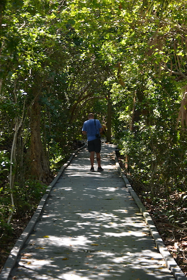 Chuck walking along the boardwalk of the Calusa Shell Mound Trail