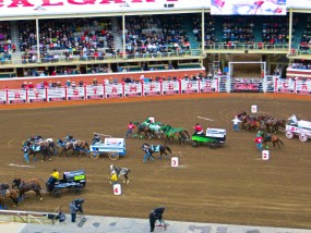 Chuckwagon Races