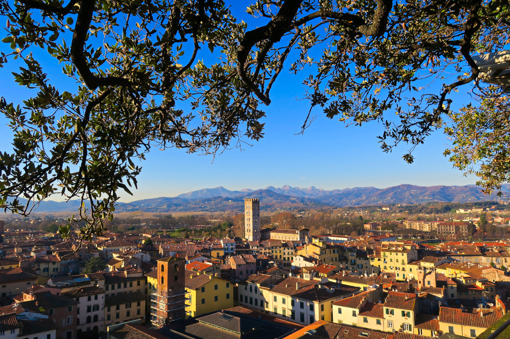 Lucca from a top the Torre Guinigi