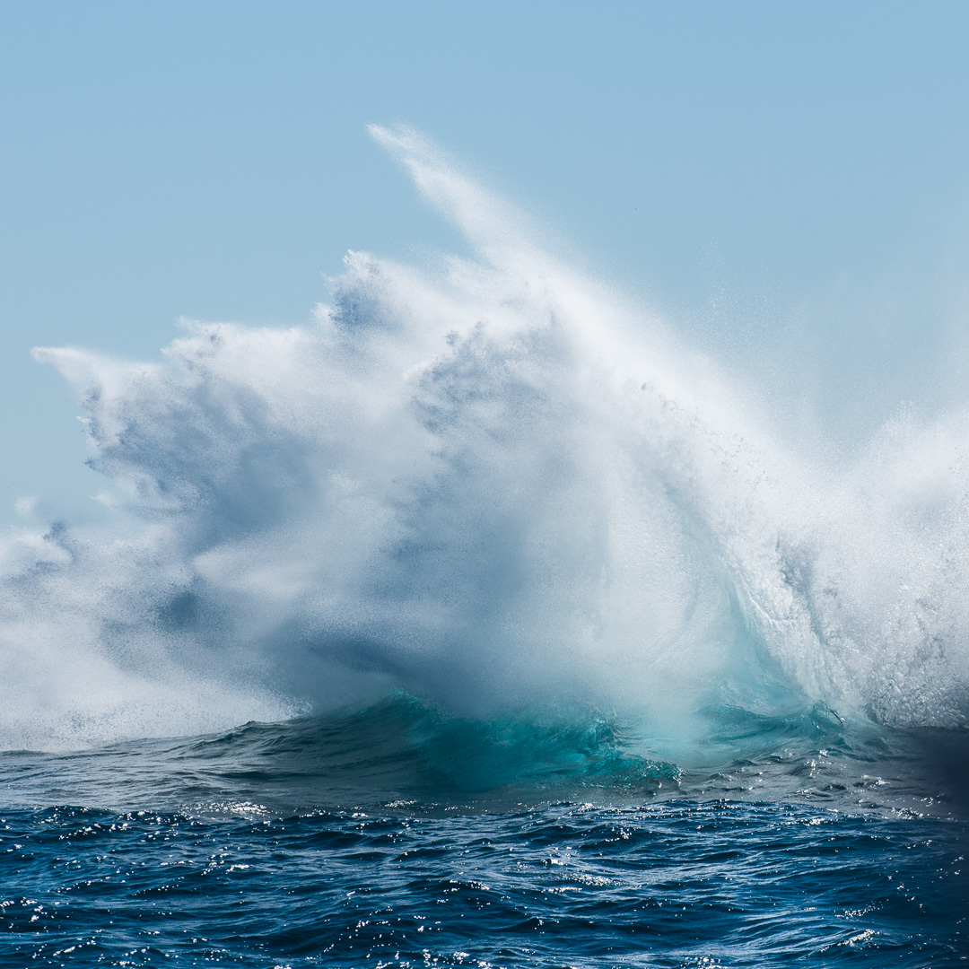 Mark Atkins Photography Whale watching Lennox Head, Byron Bay and Ballina
