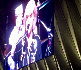 Raccoon eyes for Hall on the video screen.