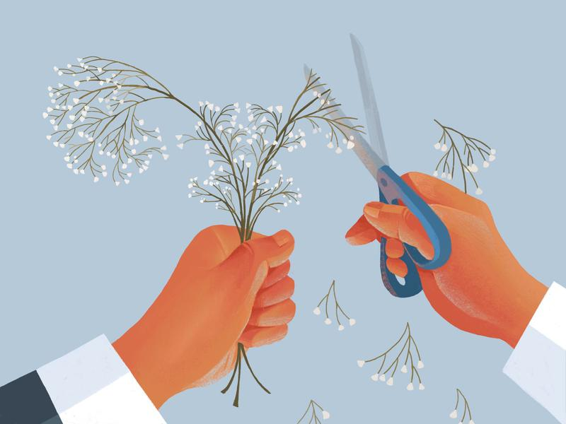 color drawing of left hand holding flowers, with right hand cutting flowers with scissors