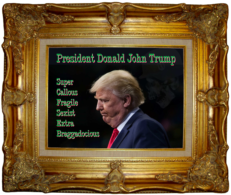 President Donald John Trump - with text Super Callous, Fragile Sexist, Extra Braggadocious. Triple chins in ornate gilt frame.