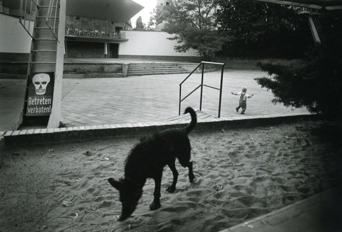 Fig. 2: Krass Clement 2003. Untitled. From Berlin Notat. This is not Josef Koudelka's dog, poised in the snow. It is Clement's dog, going about its snuffly business.