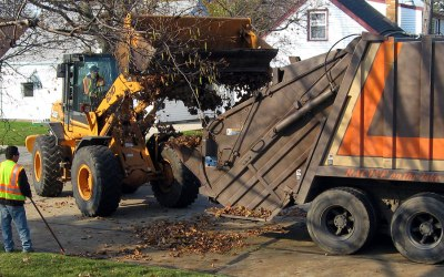 Leaf collection? Mulch leaves into lawn, garden beds