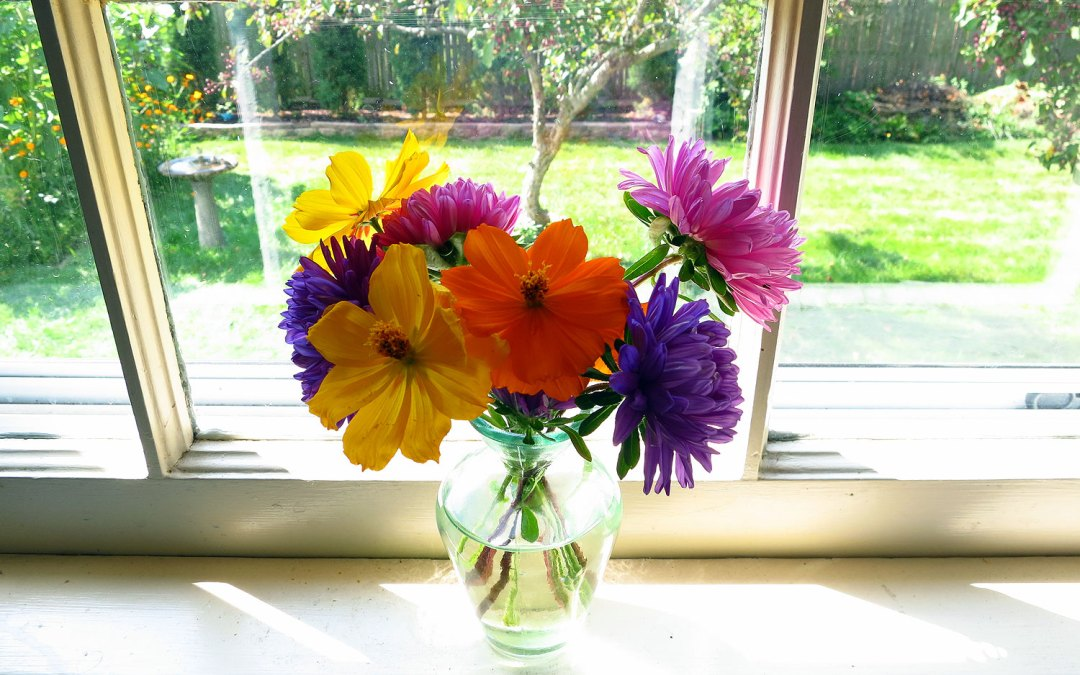 Cut flowers in a vase in the kitchen window