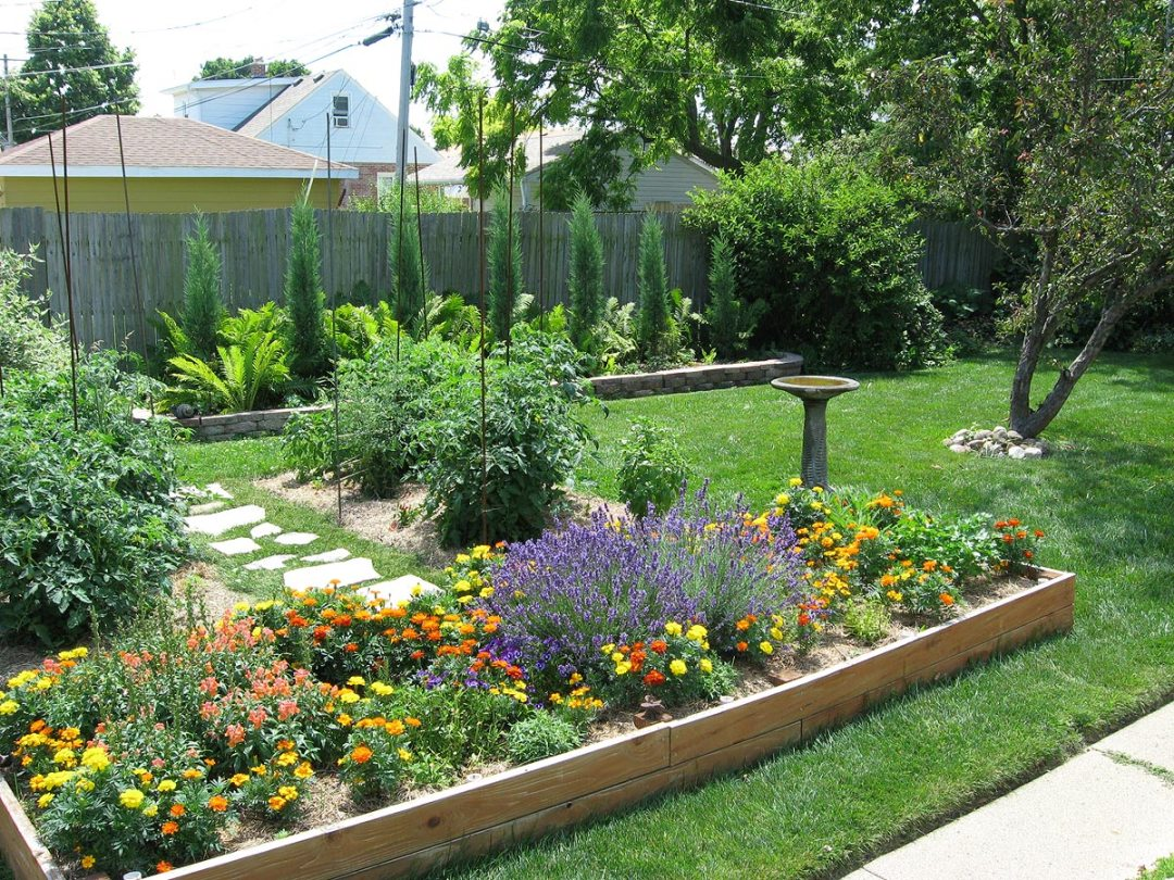 Backyard garden beds: Raised bed, tomato bed, Taylor juniper bed in Racine, Wisconsin