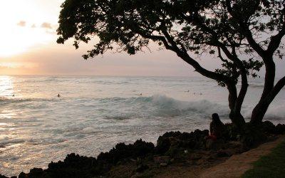 North Shore surfing, Turtle Bay resort, Oahu