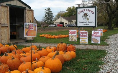 Organic produce: Piper Farms roadside stand, Wisconsin