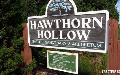 Hawthorn Hollow Nature Sanctuary & Arboretum in Kenosha, WI
