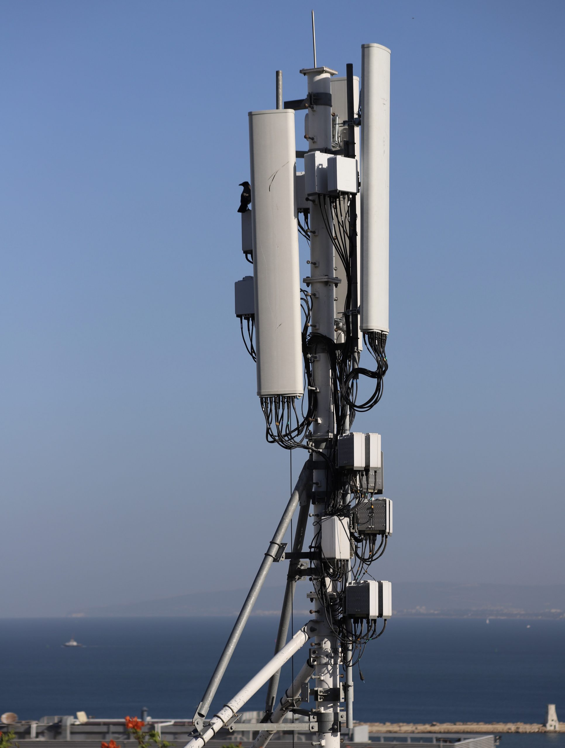 Mobile Network Coverage Mapping and Monitoring Services, Market Analysis