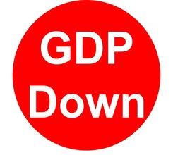 Japanese economy shrank