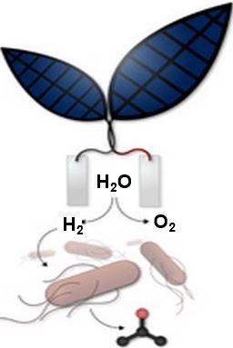 Liquid fuel from sunlight