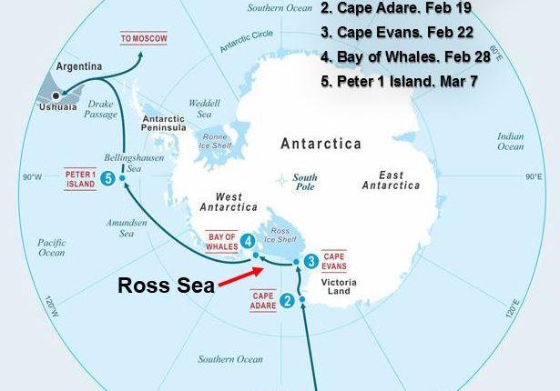 Five swims in Antarctica