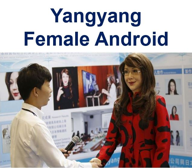 Yangyang Female Android