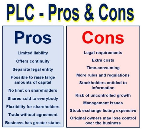Public Limited Company pros and cons