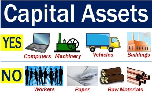 Capital Assets - what is and what is not