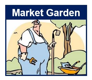 what is a market garden definition and meaning - Garden Definition