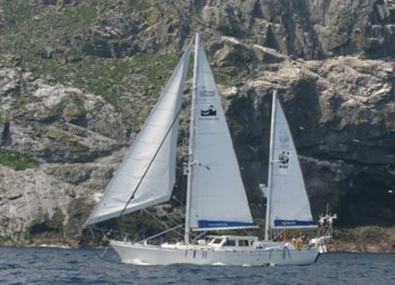 Silurian yacht
