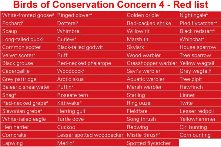 British birds on Red List