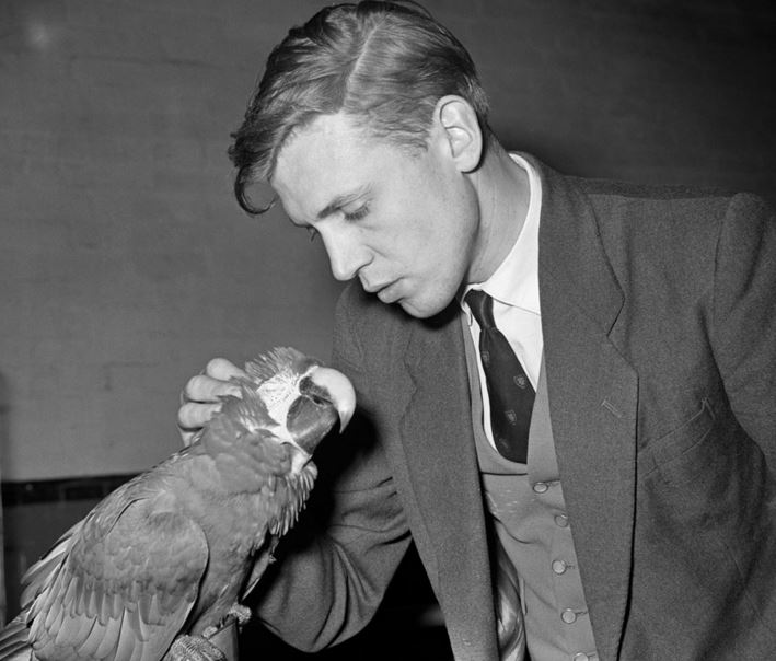 Sir David Attenborough 1960s