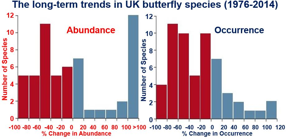 UK butterfly populations