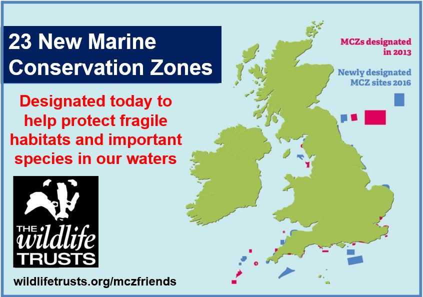 Marine Conservation Zones