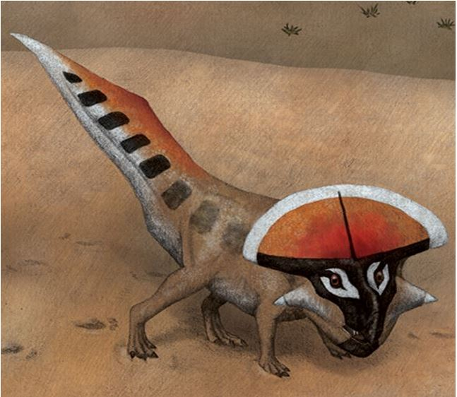 Protoceratops with the most impressive features likely were more effective in scaring off rivals and attracting females