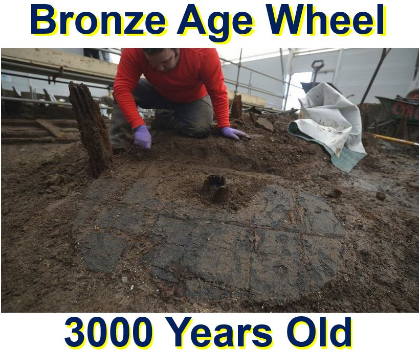 Bronze Age wheel 3000 years old discovered