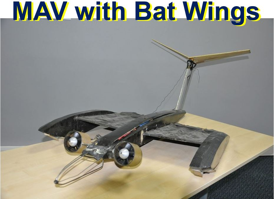 MAV with bat like wings