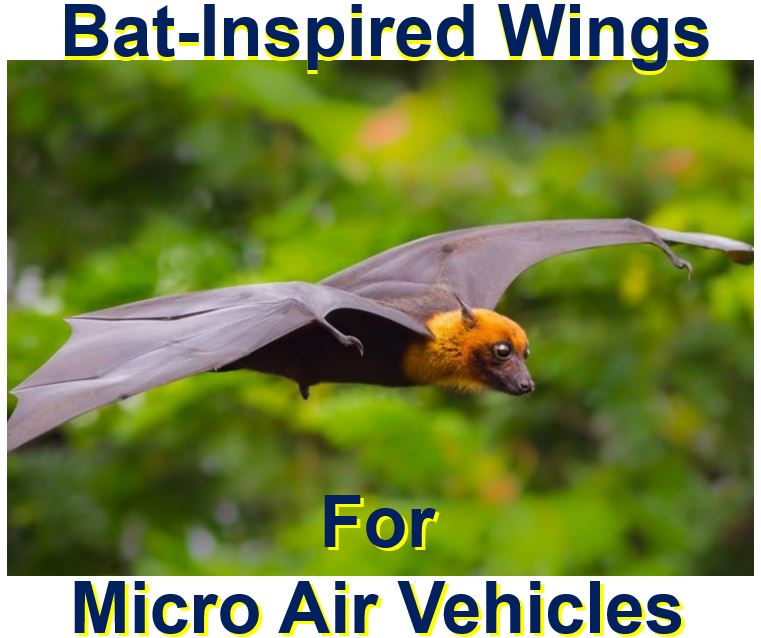 Micro Air Vehicles with bat wings
