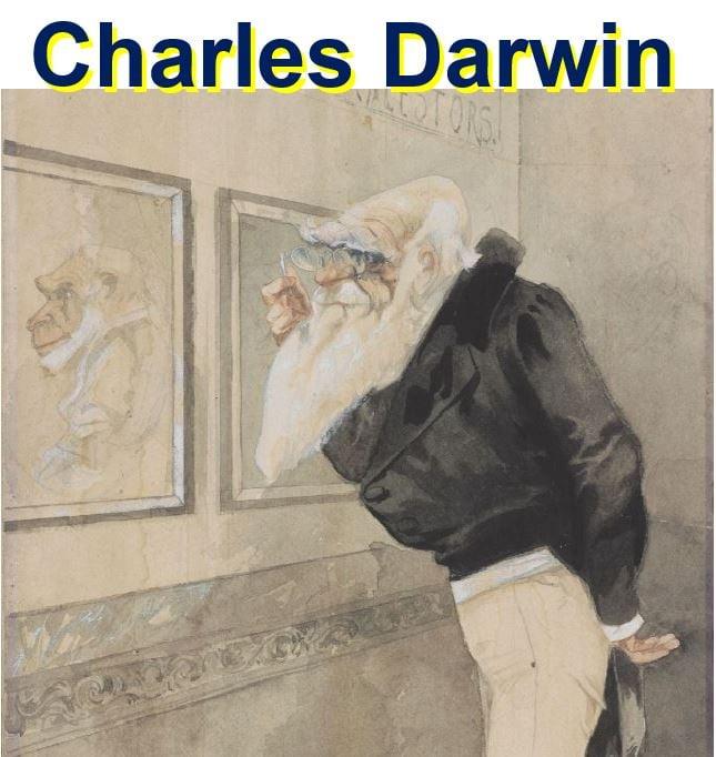 Darwin Cambridge University Library exhibition