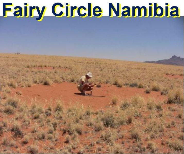 Fairy circle in Namibia
